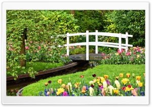 Small Garden Pond with Bridge, Spring Flowers HD Wide Wallpaper for 4K UHD Widescreen desktop & smartphone