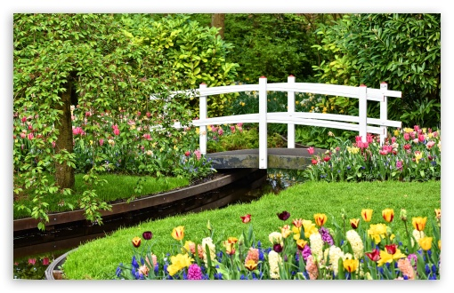 Small Garden Pond with Bridge, Spring Flowers UltraHD Wallpaper for Wide 16:10 5:3 Widescreen WHXGA WQXGA WUXGA WXGA WGA ; UltraWide 21:9 24:10 ; 8K UHD TV 16:9 Ultra High Definition 2160p 1440p 1080p 900p 720p ; UHD 16:9 2160p 1440p 1080p 900p 720p ; Standard 4:3 5:4 3:2 Fullscreen UXGA XGA SVGA QSXGA SXGA DVGA HVGA HQVGA ( Apple PowerBook G4 iPhone 4 3G 3GS iPod Touch ) ; Tablet 1:1 ; iPad 1/2/Mini ; Mobile 4:3 5:3 3:2 16:9 5:4 - UXGA XGA SVGA WGA DVGA HVGA HQVGA ( Apple PowerBook G4 iPhone 4 3G 3GS iPod Touch ) 2160p 1440p 1080p 900p 720p QSXGA SXGA ;