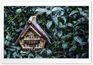 Small House HD Wide Wallpaper for Widescreen