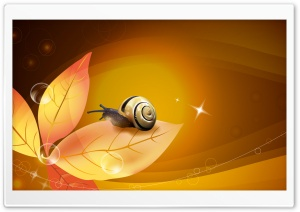 Snail Illustration HD Wide Wallpaper for Widescreen