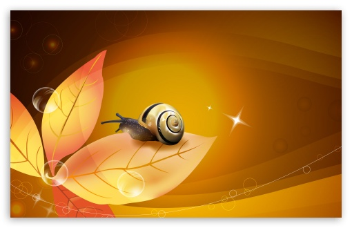 Snail Illustration HD wallpaper for Wide 16:10 5:3 Widescreen WHXGA WQXGA WUXGA WXGA WGA ; HD 16:9 High Definition WQHD QWXGA 1080p 900p 720p QHD nHD ; Standard 4:3 5:4 3:2 Fullscreen UXGA XGA SVGA QSXGA SXGA DVGA HVGA HQVGA devices ( Apple PowerBook G4 iPhone 4 3G 3GS iPod Touch ) ; Tablet 1:1 ; iPad 1/2/Mini ; Mobile 4:3 5:3 3:2 16:9 5:4 - UXGA XGA SVGA WGA DVGA HVGA HQVGA devices ( Apple PowerBook G4 iPhone 4 3G 3GS iPod Touch ) WQHD QWXGA 1080p 900p 720p QHD nHD QSXGA SXGA ;