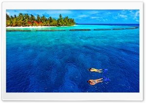 Snorkeling Vacation HD Wide Wallpaper for Widescreen