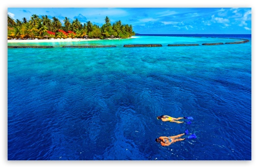 Snorkeling Vacation ❤ 4K UHD Wallpaper for Wide 16:10 5:3 Widescreen WHXGA WQXGA WUXGA WXGA WGA ; 4K UHD 16:9 Ultra High Definition 2160p 1440p 1080p 900p 720p ; UHD 16:9 2160p 1440p 1080p 900p 720p ; Standard 4:3 5:4 3:2 Fullscreen UXGA XGA SVGA QSXGA SXGA DVGA HVGA HQVGA ( Apple PowerBook G4 iPhone 4 3G 3GS iPod Touch ) ; Tablet 1:1 ; iPad 1/2/Mini ; Mobile 4:3 5:3 3:2 16:9 5:4 - UXGA XGA SVGA WGA DVGA HVGA HQVGA ( Apple PowerBook G4 iPhone 4 3G 3GS iPod Touch ) 2160p 1440p 1080p 900p 720p QSXGA SXGA ; Dual 16:10 5:3 4:3 5:4 WHXGA WQXGA WUXGA WXGA WGA UXGA XGA SVGA QSXGA SXGA ;