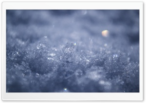 Snow HD Wide Wallpaper for Widescreen