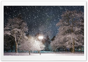 Snow At Night HD Wide Wallpaper for Widescreen