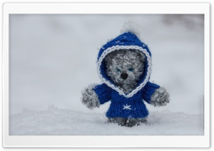 Snow Bear HD Wide Wallpaper for Widescreen