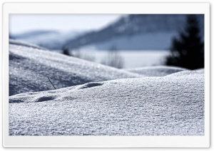 Snow, Close Up HD Wide Wallpaper for Widescreen