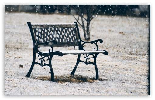 Snow Covered Bench HD wallpaper for Wide 16:10 5:3 Widescreen WHXGA WQXGA WUXGA WXGA WGA ; HD 16:9 High Definition WQHD QWXGA 1080p 900p 720p QHD nHD ; UHD 16:9 WQHD QWXGA 1080p 900p 720p QHD nHD ; Standard 4:3 5:4 3:2 Fullscreen UXGA XGA SVGA QSXGA SXGA DVGA HVGA HQVGA devices ( Apple PowerBook G4 iPhone 4 3G 3GS iPod Touch ) ; Tablet 1:1 ; iPad 1/2/Mini ; Mobile 4:3 5:3 3:2 16:9 5:4 - UXGA XGA SVGA WGA DVGA HVGA HQVGA devices ( Apple PowerBook G4 iPhone 4 3G 3GS iPod Touch ) WQHD QWXGA 1080p 900p 720p QHD nHD QSXGA SXGA ;