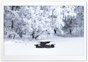 Snow Covered Picnic Table, Bench, Trees, Winter Ultra HD Wallpaper for 4K UHD Widescreen desktop, tablet & smartphone