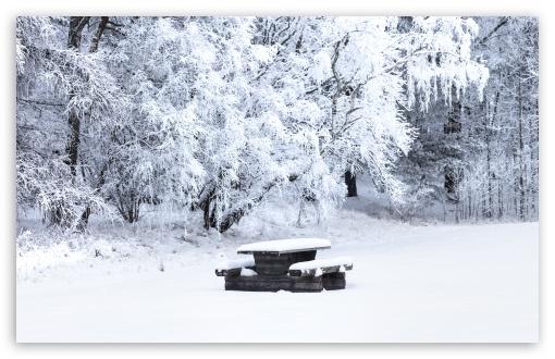 Snow Covered Picnic Table, Bench, Trees, Winter UltraHD Wallpaper for Wide 16:10 5:3 Widescreen WHXGA WQXGA WUXGA WXGA WGA ; UltraWide 21:9 24:10 ; 8K UHD TV 16:9 Ultra High Definition 2160p 1440p 1080p 900p 720p ; UHD 16:9 2160p 1440p 1080p 900p 720p ; Standard 4:3 5:4 3:2 Fullscreen UXGA XGA SVGA QSXGA SXGA DVGA HVGA HQVGA ( Apple PowerBook G4 iPhone 4 3G 3GS iPod Touch ) ; Smartphone 16:9 3:2 5:3 2160p 1440p 1080p 900p 720p DVGA HVGA HQVGA ( Apple PowerBook G4 iPhone 4 3G 3GS iPod Touch ) WGA ; Tablet 1:1 ; iPad 1/2/Mini ; Mobile 4:3 5:3 3:2 16:9 5:4 - UXGA XGA SVGA WGA DVGA HVGA HQVGA ( Apple PowerBook G4 iPhone 4 3G 3GS iPod Touch ) 2160p 1440p 1080p 900p 720p QSXGA SXGA ;