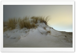 Snow Dunes in Hook of Holland HD Wide Wallpaper for Widescreen