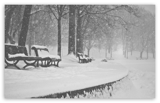 Snow Falling Black and White ❤ 4K UHD Wallpaper for Wide 16:10 5:3 Widescreen WHXGA WQXGA WUXGA WXGA WGA ; 4K UHD 16:9 Ultra High Definition 2160p 1440p 1080p 900p 720p ; UHD 16:9 2160p 1440p 1080p 900p 720p ; Standard 4:3 5:4 3:2 Fullscreen UXGA XGA SVGA QSXGA SXGA DVGA HVGA HQVGA ( Apple PowerBook G4 iPhone 4 3G 3GS iPod Touch ) ; Tablet 1:1 ; iPad 1/2/Mini ; Mobile 4:3 5:3 3:2 16:9 5:4 - UXGA XGA SVGA WGA DVGA HVGA HQVGA ( Apple PowerBook G4 iPhone 4 3G 3GS iPod Touch ) 2160p 1440p 1080p 900p 720p QSXGA SXGA ; Dual 16:10 5:3 16:9 4:3 5:4 WHXGA WQXGA WUXGA WXGA WGA 2160p 1440p 1080p 900p 720p UXGA XGA SVGA QSXGA SXGA ;