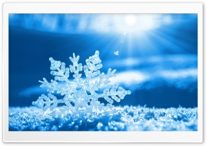 Snow Flake HD Wide Wallpaper for Widescreen