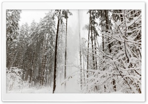 Snow in Austria HD Wide Wallpaper for Widescreen