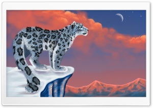 Snow Leopard Drawing HD Wide Wallpaper for Widescreen