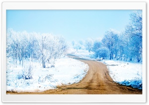 Snow Path HD Wide Wallpaper for Widescreen