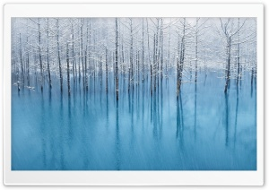 Snow Pond HD Wide Wallpaper for Widescreen