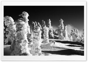 Snow Statues BW HD Wide Wallpaper for Widescreen