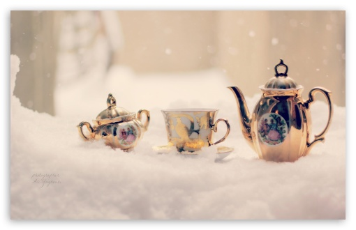 Snow Tea ❤ 4K UHD Wallpaper for Wide 16:10 5:3 Widescreen WHXGA WQXGA WUXGA WXGA WGA ; 4K UHD 16:9 Ultra High Definition 2160p 1440p 1080p 900p 720p ; UHD 16:9 2160p 1440p 1080p 900p 720p ; Standard 3:2 Fullscreen DVGA HVGA HQVGA ( Apple PowerBook G4 iPhone 4 3G 3GS iPod Touch ) ; Mobile 5:3 3:2 16:9 - WGA DVGA HVGA HQVGA ( Apple PowerBook G4 iPhone 4 3G 3GS iPod Touch ) 2160p 1440p 1080p 900p 720p ; Dual 5:4 QSXGA SXGA ;