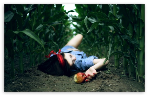 Snow White And The Poison Apple HD wallpaper for Wide 16:10 5:3 Widescreen WHXGA WQXGA WUXGA WXGA WGA ; HD 16:9 High Definition WQHD QWXGA 1080p 900p 720p QHD nHD ; Standard 4:3 5:4 3:2 Fullscreen UXGA XGA SVGA QSXGA SXGA DVGA HVGA HQVGA devices ( Apple PowerBook G4 iPhone 4 3G 3GS iPod Touch ) ; Tablet 1:1 ; iPad 1/2/Mini ; Mobile 4:3 5:3 3:2 16:9 5:4 - UXGA XGA SVGA WGA DVGA HVGA HQVGA devices ( Apple PowerBook G4 iPhone 4 3G 3GS iPod Touch ) WQHD QWXGA 1080p 900p 720p QHD nHD QSXGA SXGA ; Dual 4:3 5:4 UXGA XGA SVGA QSXGA SXGA ;