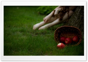 Snow White Apple HD Wide Wallpaper for Widescreen