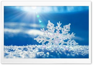 Snowflake HD Wide Wallpaper for Widescreen