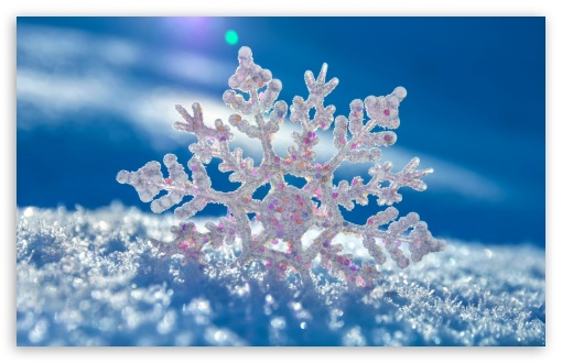 Snowflake ❤ 4K UHD Wallpaper for Wide 16:10 5:3 Widescreen WHXGA WQXGA WUXGA WXGA WGA ; 4K UHD 16:9 Ultra High Definition 2160p 1440p 1080p 900p 720p ; Standard 4:3 5:4 3:2 Fullscreen UXGA XGA SVGA QSXGA SXGA DVGA HVGA HQVGA ( Apple PowerBook G4 iPhone 4 3G 3GS iPod Touch ) ; Tablet 1:1 ; iPad 1/2/Mini ; Mobile 4:3 5:3 3:2 16:9 5:4 - UXGA XGA SVGA WGA DVGA HVGA HQVGA ( Apple PowerBook G4 iPhone 4 3G 3GS iPod Touch ) 2160p 1440p 1080p 900p 720p QSXGA SXGA ;