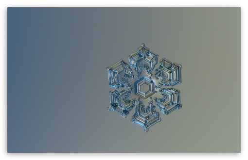 Snowflake Close Up ❤ 4K UHD Wallpaper for Wide 16:10 5:3 Widescreen WHXGA WQXGA WUXGA WXGA WGA ; UltraWide 21:9 ; 4K UHD 16:9 Ultra High Definition 2160p 1440p 1080p 900p 720p ; Standard 4:3 5:4 3:2 Fullscreen UXGA XGA SVGA QSXGA SXGA DVGA HVGA HQVGA ( Apple PowerBook G4 iPhone 4 3G 3GS iPod Touch ) ; Smartphone 16:9 3:2 5:3 2160p 1440p 1080p 900p 720p DVGA HVGA HQVGA ( Apple PowerBook G4 iPhone 4 3G 3GS iPod Touch ) WGA ; Tablet 1:1 ; iPad 1/2/Mini ; Mobile 4:3 5:3 3:2 16:9 5:4 - UXGA XGA SVGA WGA DVGA HVGA HQVGA ( Apple PowerBook G4 iPhone 4 3G 3GS iPod Touch ) 2160p 1440p 1080p 900p 720p QSXGA SXGA ; Dual 16:10 5:3 4:3 5:4 3:2 WHXGA WQXGA WUXGA WXGA WGA UXGA XGA SVGA QSXGA SXGA DVGA HVGA HQVGA ( Apple PowerBook G4 iPhone 4 3G 3GS iPod Touch ) ;