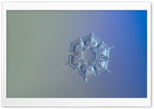 Snowflake Minimalism HD Wide Wallpaper for Widescreen