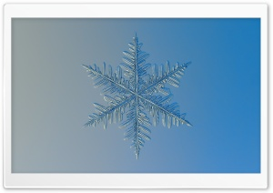 Snowflake Under Microscope HD Wide Wallpaper for Widescreen