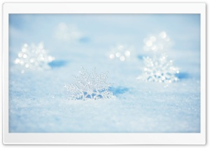 Snowflakes Ultra HD Wallpaper for 4K UHD Widescreen desktop, tablet & smartphone