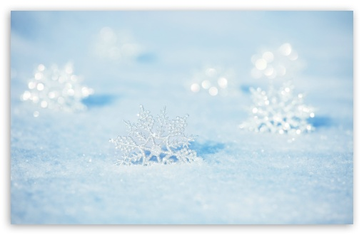Snowflakes ❤ 4K UHD Wallpaper for Wide 16:10 5:3 Widescreen WHXGA WQXGA WUXGA WXGA WGA ; 4K UHD 16:9 Ultra High Definition 2160p 1440p 1080p 900p 720p ; UHD 16:9 2160p 1440p 1080p 900p 720p ; Standard 4:3 5:4 3:2 Fullscreen UXGA XGA SVGA QSXGA SXGA DVGA HVGA HQVGA ( Apple PowerBook G4 iPhone 4 3G 3GS iPod Touch ) ; Smartphone 5:3 WGA ; Tablet 1:1 ; iPad 1/2/Mini ; Mobile 4:3 5:3 3:2 16:9 5:4 - UXGA XGA SVGA WGA DVGA HVGA HQVGA ( Apple PowerBook G4 iPhone 4 3G 3GS iPod Touch ) 2160p 1440p 1080p 900p 720p QSXGA SXGA ; Dual 16:10 5:3 16:9 4:3 5:4 WHXGA WQXGA WUXGA WXGA WGA 2160p 1440p 1080p 900p 720p UXGA XGA SVGA QSXGA SXGA ;