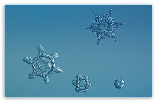Snowflakes Background HD wallpaper for Wide 16:10 5:3 Widescreen WHXGA WQXGA WUXGA WXGA WGA ; HD 16:9 High Definition WQHD QWXGA 1080p 900p 720p QHD nHD ; Standard 4:3 5:4 3:2 Fullscreen UXGA XGA SVGA QSXGA SXGA DVGA HVGA HQVGA devices ( Apple PowerBook G4 iPhone 4 3G 3GS iPod Touch ) ; Smartphone 16:9 3:2 5:3 WQHD QWXGA 1080p 900p 720p QHD nHD DVGA HVGA HQVGA devices ( Apple PowerBook G4 iPhone 4 3G 3GS iPod Touch ) WGA ; Tablet 1:1 ; iPad 1/2/Mini ; Mobile 4:3 5:3 3:2 16:9 5:4 - UXGA XGA SVGA WGA DVGA HVGA HQVGA devices ( Apple PowerBook G4 iPhone 4 3G 3GS iPod Touch ) WQHD QWXGA 1080p 900p 720p QHD nHD QSXGA SXGA ;