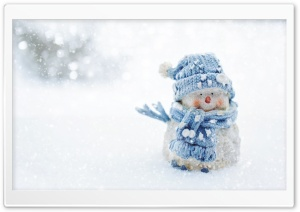 Snowman Decoration HD Wide Wallpaper for Widescreen