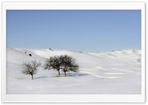 Snowscape HD Wide Wallpaper for Widescreen