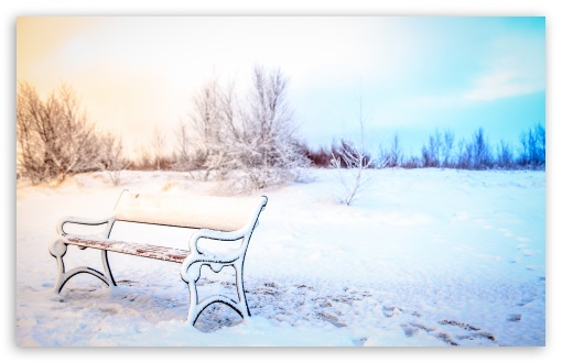 Snowy Bench, Winter ❤ 4K UHD Wallpaper for Wide 16:10 5:3 Widescreen WHXGA WQXGA WUXGA WXGA WGA ; UltraWide 21:9 24:10 ; 4K UHD 16:9 Ultra High Definition 2160p 1440p 1080p 900p 720p ; UHD 16:9 2160p 1440p 1080p 900p 720p ; Standard 4:3 5:4 3:2 Fullscreen UXGA XGA SVGA QSXGA SXGA DVGA HVGA HQVGA ( Apple PowerBook G4 iPhone 4 3G 3GS iPod Touch ) ; Smartphone 16:9 3:2 5:3 2160p 1440p 1080p 900p 720p DVGA HVGA HQVGA ( Apple PowerBook G4 iPhone 4 3G 3GS iPod Touch ) WGA ; Tablet 1:1 ; iPad 1/2/Mini ; Mobile 4:3 5:3 3:2 16:9 5:4 - UXGA XGA SVGA WGA DVGA HVGA HQVGA ( Apple PowerBook G4 iPhone 4 3G 3GS iPod Touch ) 2160p 1440p 1080p 900p 720p QSXGA SXGA ;