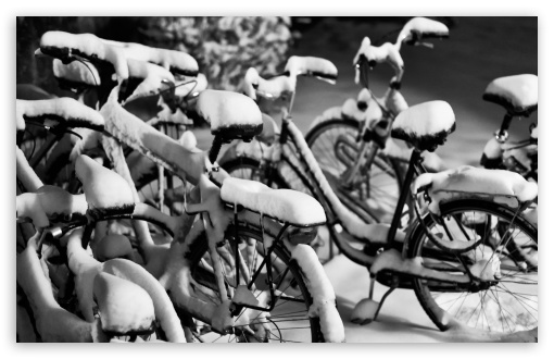 Snowy Bicycles HD wallpaper for Wide 16:10 5:3 Widescreen WHXGA WQXGA WUXGA WXGA WGA ; HD 16:9 High Definition WQHD QWXGA 1080p 900p 720p QHD nHD ; UHD 16:9 WQHD QWXGA 1080p 900p 720p QHD nHD ; Standard 4:3 5:4 3:2 Fullscreen UXGA XGA SVGA QSXGA SXGA DVGA HVGA HQVGA devices ( Apple PowerBook G4 iPhone 4 3G 3GS iPod Touch ) ; Tablet 1:1 ; iPad 1/2/Mini ; Mobile 4:3 5:3 3:2 16:9 5:4 - UXGA XGA SVGA WGA DVGA HVGA HQVGA devices ( Apple PowerBook G4 iPhone 4 3G 3GS iPod Touch ) WQHD QWXGA 1080p 900p 720p QHD nHD QSXGA SXGA ;