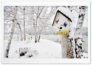 Snowy Birdhouse HD Wide Wallpaper for Widescreen