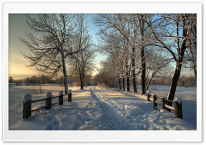 Snowy Country Road HD Wide Wallpaper for Widescreen