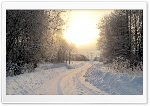 Snowy Country Road Winter HD Wide Wallpaper for Widescreen