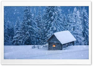 Snowy Forest Cabin HD Wide Wallpaper for Widescreen