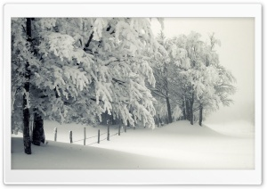 Snowy Landscape HD Wide Wallpaper for Widescreen
