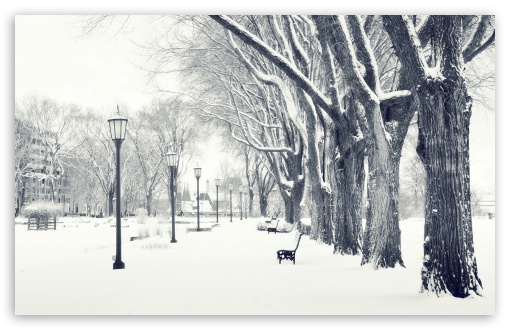 Snowy Park HD wallpaper for Standard 4:3 5:4 Fullscreen UXGA XGA SVGA QSXGA SXGA ; Wide 16:10 5:3 Widescreen WHXGA WQXGA WUXGA WXGA WGA ; HD 16:9 High Definition WQHD QWXGA 1080p 900p 720p QHD nHD ; Other 3:2 DVGA HVGA HQVGA devices ( Apple PowerBook G4 iPhone 4 3G 3GS iPod Touch ) ; Mobile VGA WVGA iPhone iPad PSP Phone - VGA QVGA Smartphone ( PocketPC GPS iPod Zune BlackBerry HTC Samsung LG Nokia Eten Asus ) WVGA WQVGA Smartphone ( HTC Samsung Sony Ericsson LG Vertu MIO ) HVGA Smartphone ( Apple iPhone iPod BlackBerry HTC Samsung Nokia ) Sony PSP Zune HD Zen ; Tablet 2 ;
