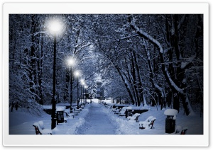 Snowy Park At Night HD Wide Wallpaper for Widescreen