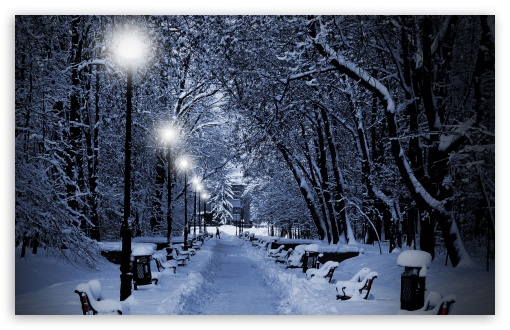 Snowy Park At Night ❤ 4K UHD Wallpaper for Wide 16:10 5:3 Widescreen WHXGA WQXGA WUXGA WXGA WGA ; 4K UHD 16:9 Ultra High Definition 2160p 1440p 1080p 900p 720p ; Standard 4:3 5:4 3:2 Fullscreen UXGA XGA SVGA QSXGA SXGA DVGA HVGA HQVGA ( Apple PowerBook G4 iPhone 4 3G 3GS iPod Touch ) ; Tablet 1:1 ; iPad 1/2/Mini ; Mobile 4:3 5:3 3:2 16:9 5:4 - UXGA XGA SVGA WGA DVGA HVGA HQVGA ( Apple PowerBook G4 iPhone 4 3G 3GS iPod Touch ) 2160p 1440p 1080p 900p 720p QSXGA SXGA ;