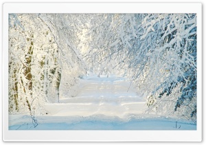 Snowy Road, Winter HD Wide Wallpaper for Widescreen