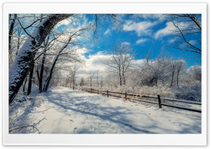 Snowy Road, Winter Landscape Ultra HD Wallpaper for 4K UHD Widescreen desktop, tablet & smartphone