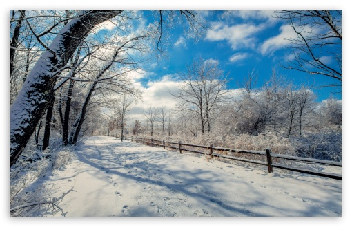 Snowy Road, Winter Landscape UltraHD Wallpaper for Wide 16:10 5:3 Widescreen WHXGA WQXGA WUXGA WXGA WGA ; 8K UHD TV 16:9 Ultra High Definition 2160p 1440p 1080p 900p 720p ; UHD 16:9 2160p 1440p 1080p 900p 720p ; Standard 4:3 5:4 3:2 Fullscreen UXGA XGA SVGA QSXGA SXGA DVGA HVGA HQVGA ( Apple PowerBook G4 iPhone 4 3G 3GS iPod Touch ) ; Smartphone 16:9 3:2 5:3 2160p 1440p 1080p 900p 720p DVGA HVGA HQVGA ( Apple PowerBook G4 iPhone 4 3G 3GS iPod Touch ) WGA ; Tablet 1:1 ; iPad 1/2/Mini ; Mobile 4:3 5:3 3:2 16:9 5:4 - UXGA XGA SVGA WGA DVGA HVGA HQVGA ( Apple PowerBook G4 iPhone 4 3G 3GS iPod Touch ) 2160p 1440p 1080p 900p 720p QSXGA SXGA ;