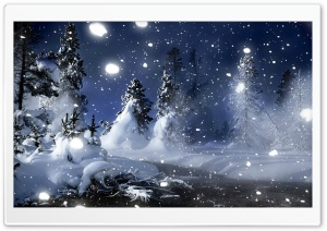 Snowy Spruce Trees HD Wide Wallpaper for Widescreen