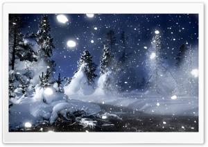 Snowy Spruce Trees HD Wide Wallpaper for Widescreen